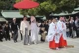 in Meiji Shrine Tokyo