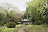 in Meiji shrine