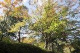 Mōtsū-ji sando