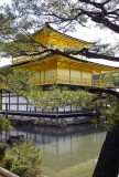 Golden temple in Kyoto M8