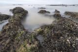 pescadero beach