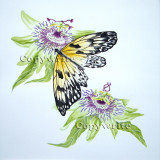 Butterfly  Passion Flowers