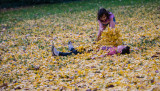 playing_in_leaves