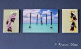 foto's van ons drietjes aan de muur