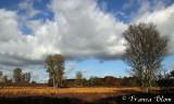 Mooie wolkenlucht erbij