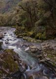 Cleddau River above Chasm