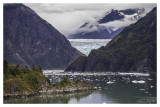 Tracy Arm and the Sawyer Glacier