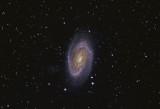 Bode's Galaxy - M81