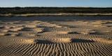 November 2014 : Sand ripples and shadows