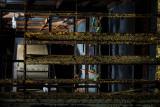 Fan room through louvres.jpg