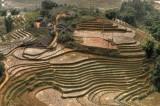 _VIE2652  Vietnam