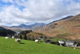 Snowdonia 2015