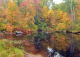 Fall Pond_1595.jpg