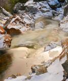 Golden Water_4529.jpg