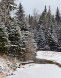 Winter Stream_4572.jpg