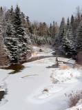 Winter Wetland_4562.jpg