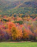 Autumn in the Foothills_2970.jpg