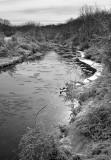 Three Rivers_7975.jpg