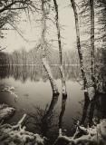 Hockanum River_044.jpg