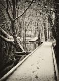 River Walk_045.jpg