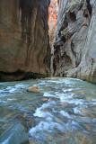 zion virgin river narrow.jpg