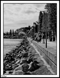 The Foreshore.