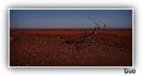 Outback of Broken Hill Where you can see the curvature of the Earth on the Horizon.