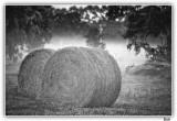Hay Bales In Summer Morning Mist.