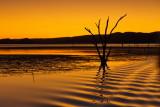 Sunset - Lake Argyle