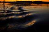 Boat Wake at Sunset - Lake Argyle