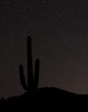 Hovatter Antennas SIte Observing -- December 27-29, 2013