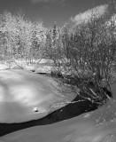Balsam Creek