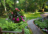 The Yard in Summer