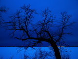 Sky at Dusk over Lake Bemidji