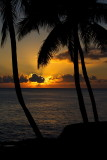 Postcards From Kauai