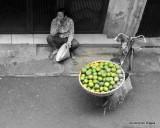 Hanoi French Quarters LIFE