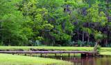 Avery Island  Louisiana USA