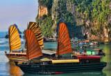 Vietnam Sails