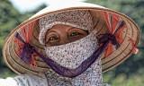 Eyes of Vietnam