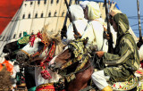 Morocco Berger Festival