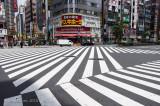 Tokyo Walks