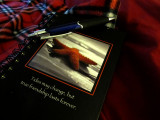 Writing \ Journaling