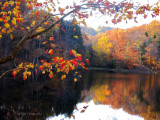 Finding Awe in Autumn