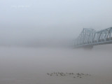 The bridge to Milton, Kentucky hidden by heavy fog and rain.