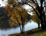Love Autumn Colors
