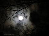 Last Nights' Full Moon