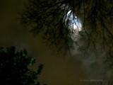 Shrouded Full Moon