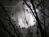 Lunar Eclipse 2017 Feb 10.