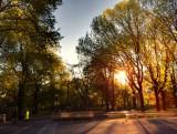 Dia espectacular en Central Park