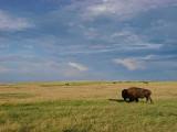 2010-07-17 Custer Badlands   Dsc00807.jpg